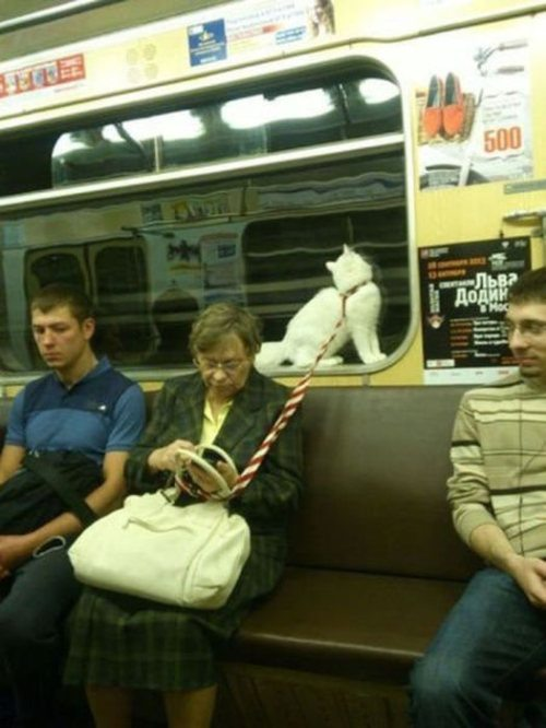 Meanwhile in RUSSIA...(17 Pics) 15