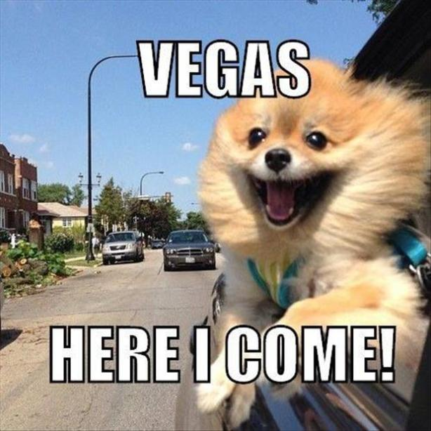 20vegas here I come