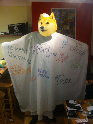 15 shibe-dog-costume