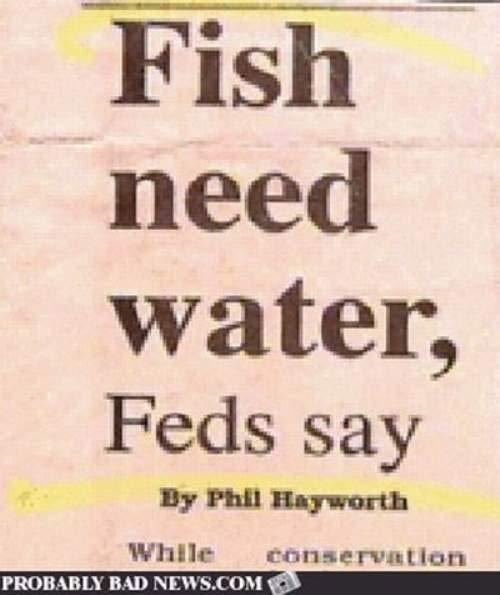 fish-need-water-newspaper-fails