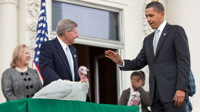 10 obama-s-pardoned-turkey-was-killed-anyway-photo-u2