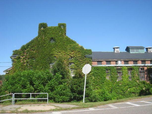 5 Fernald State School